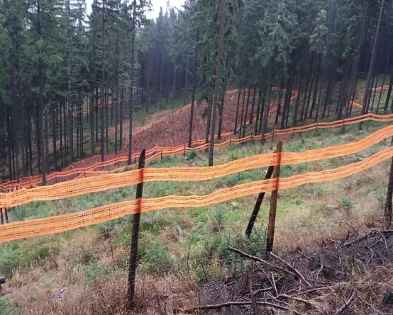 Siatki-plastikowe-siatka-ostrzegawcza-las