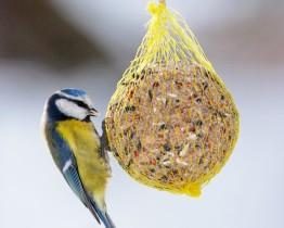 Siatka do pakowania karmy dla ptaków