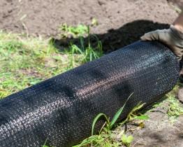 rozkładanie siatki ochronnej w ogrodzie