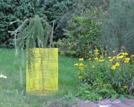 Siatka plastikowa osłonka na drzewka
