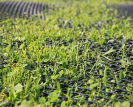 Siatka wzmacniająca podłoże - trawnik